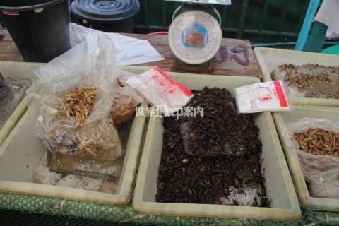 タイ バンコク クロントイ